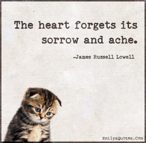 The heart forgets its sorrow and ache.