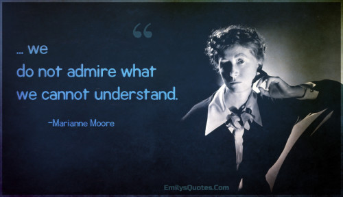 ... we do not admire what we cannot understand.