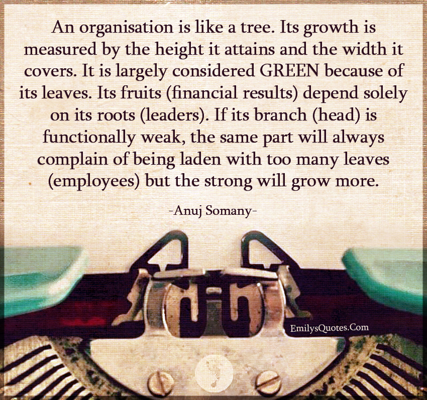 An organisation is like a tree. Its growth is measured by the height