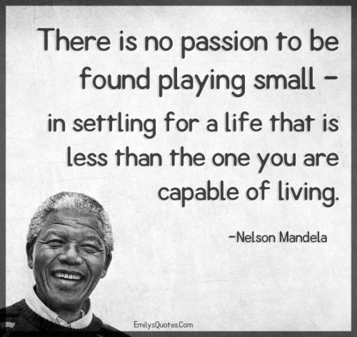 There is no passion to be found playing small - in settling for