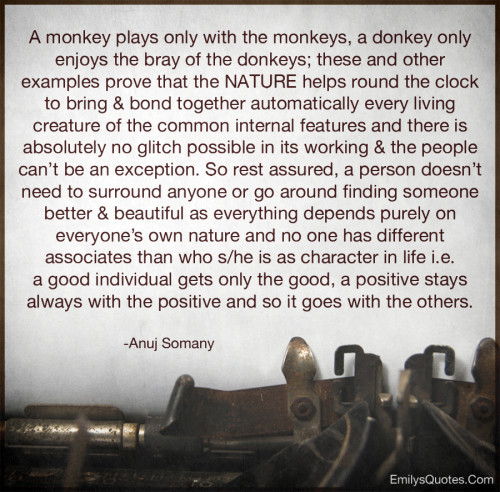 A monkey plays only with the monkeys, a donkey only enjoys the bray of