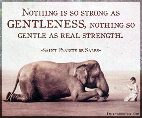 Nothing is so strong as gentleness, nothing so gentle as real strength.