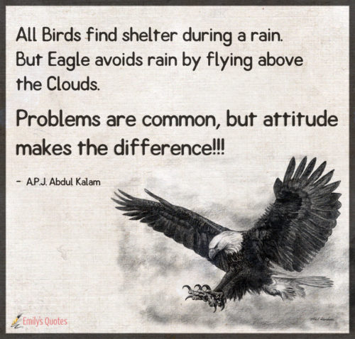 All Birds find shelter during a rain. But Eagle avoids rain by flying above