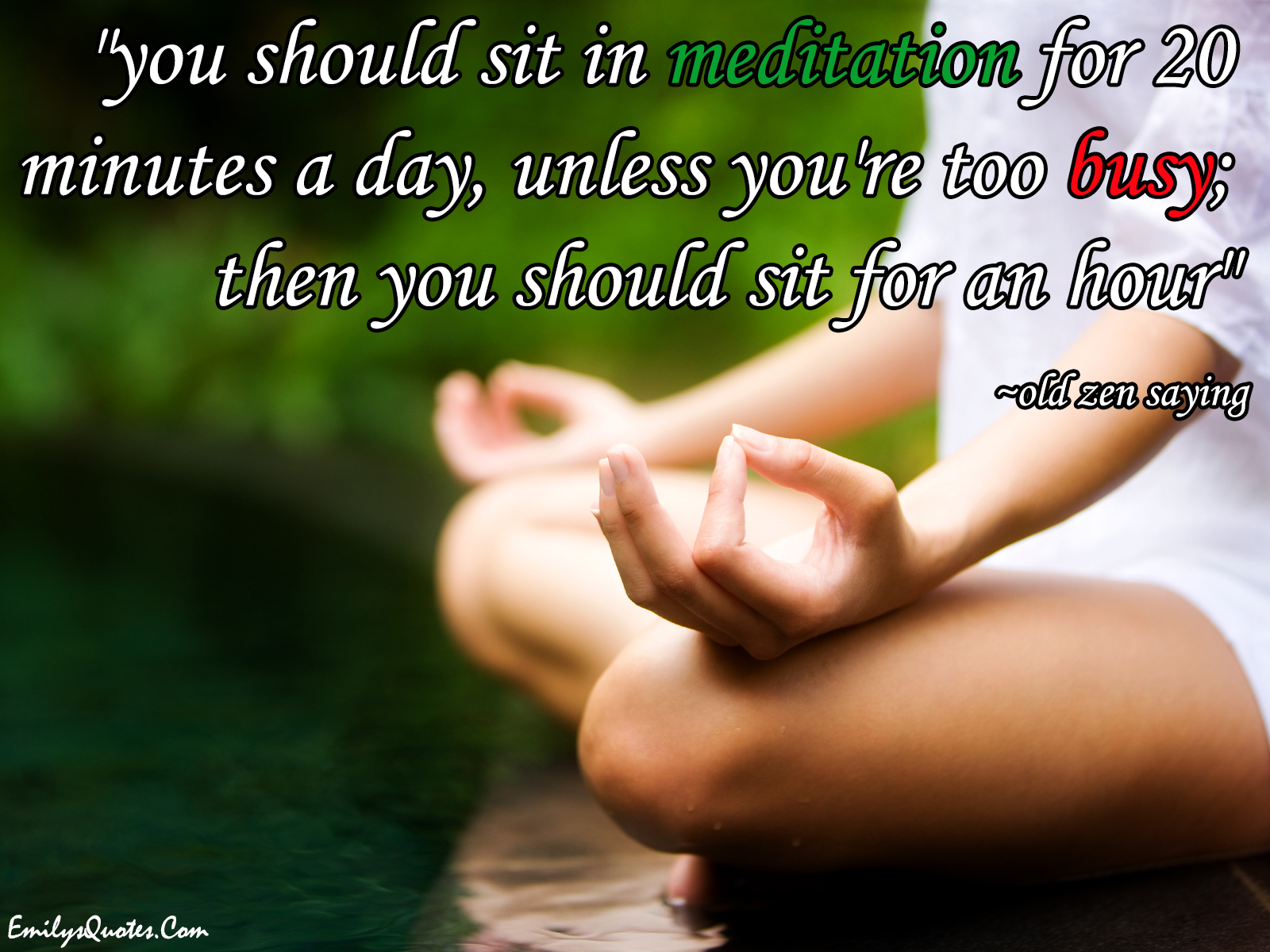 You should sit in meditation for 20 minutes a day, unless ...