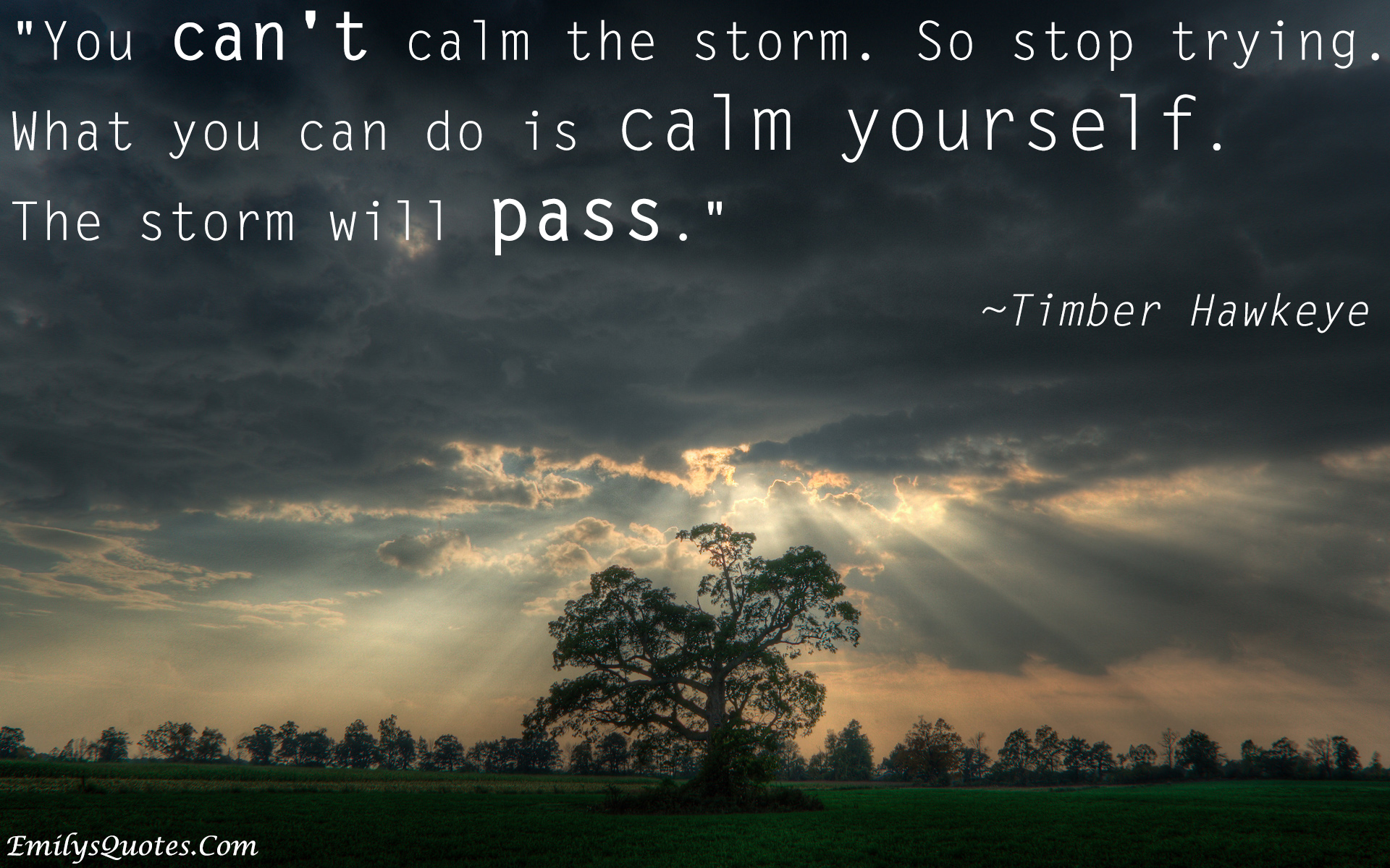 You can\'t calm the storm. so stop trying. What you can do is ...