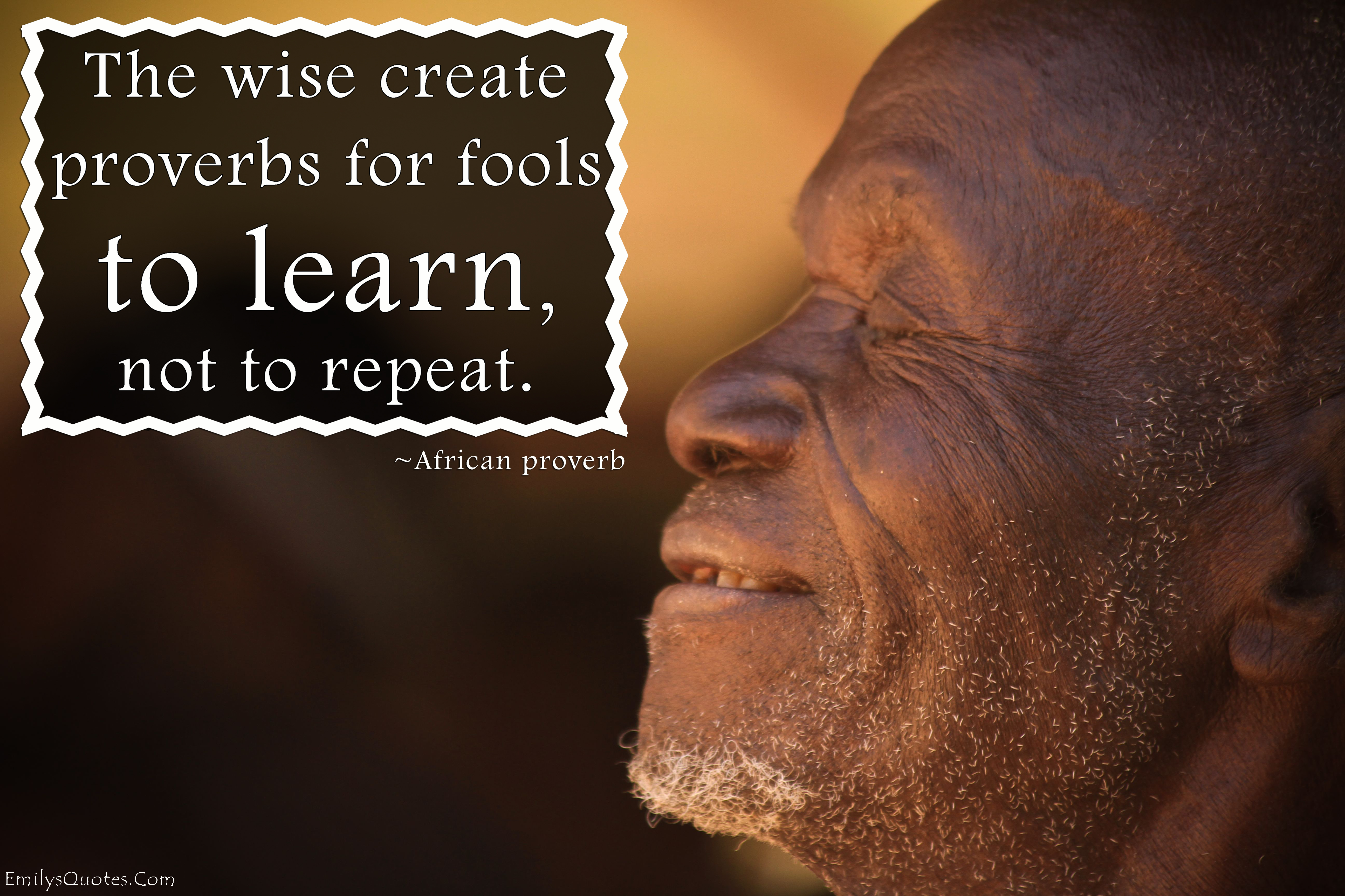 The wise create proverbs for fools to learn, not to repeat ...