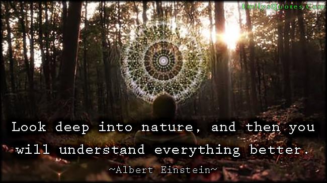 Deep into Wisdom